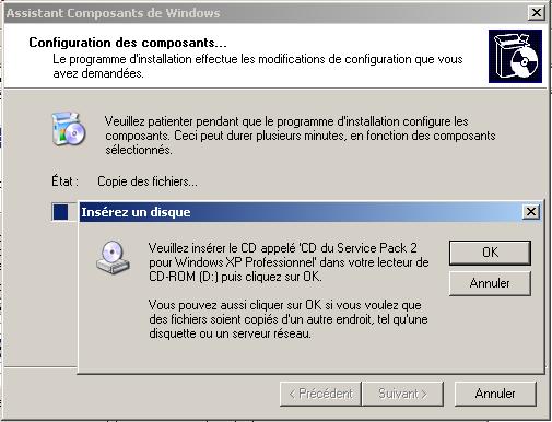 copie_des_fichiers_iis