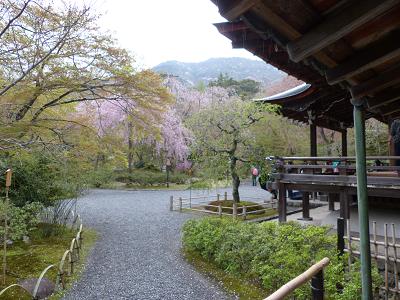 tenryu_garden